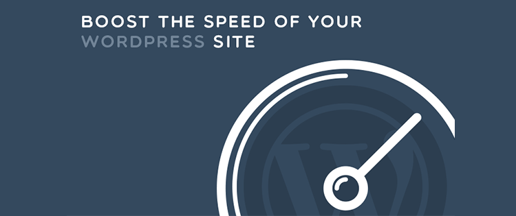 accelerating wordpress website