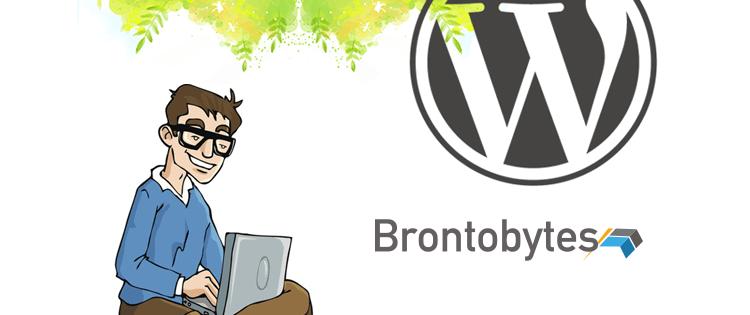 wordpress website plugins